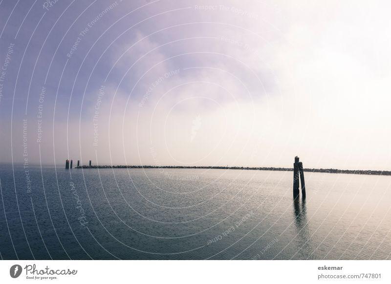 weit ... Insel Natur Landschaft Himmel Küste Bucht Ostsee Meer Vorpommersche Boddenlandschaft Hiddensee Kloster Hafenstadt Menschenleer Steg ästhetisch