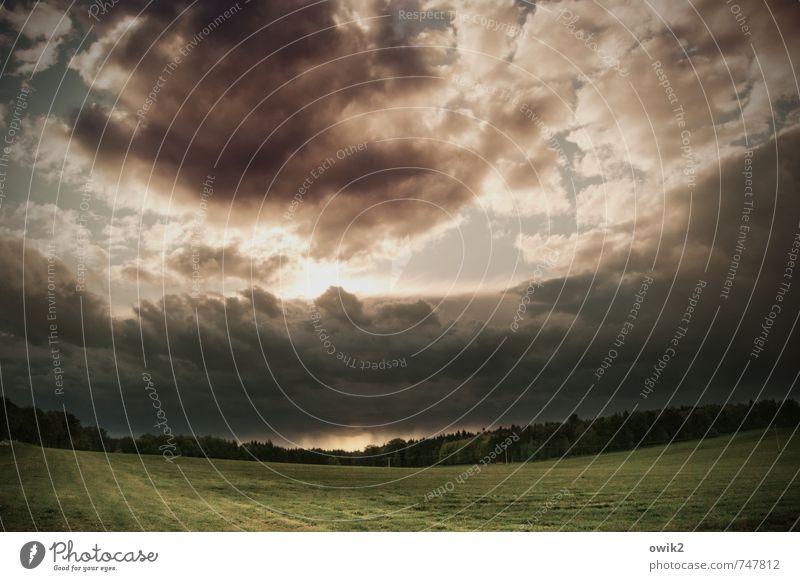 Königshainer Berge Umwelt Natur Landschaft Pflanze Himmel Gewitterwolken Horizont Sonne Wetter schlechtes Wetter Unwetter Wind Regen Gras Wiese Wald
