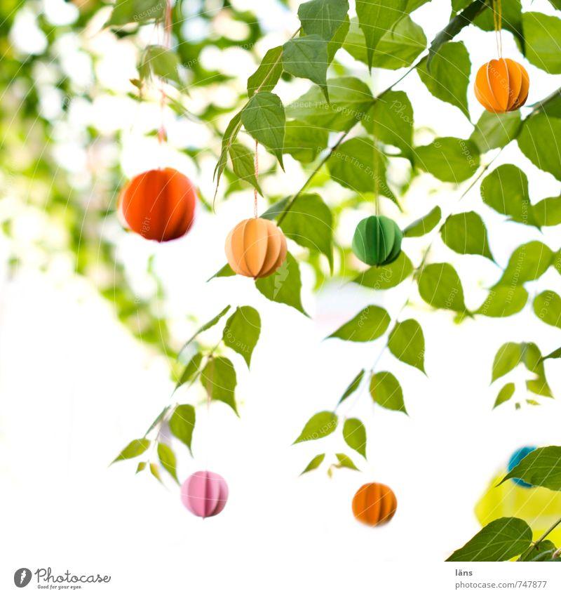windspiel Garten Feste & Feiern Natur Pflanze Blatt Grünpflanze lustig gelb grün orange rosa rot Idee einzigartig Dekoration & Verzierung Windspiel Papier