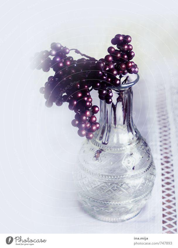 Dekoration Pflanze Glas Kitsch trist trocken rot weiß Vase Dekoration & Verzierung Beeren Tischdekoration Blume Herbstbeginn herbstlich Winter Winterstimmung