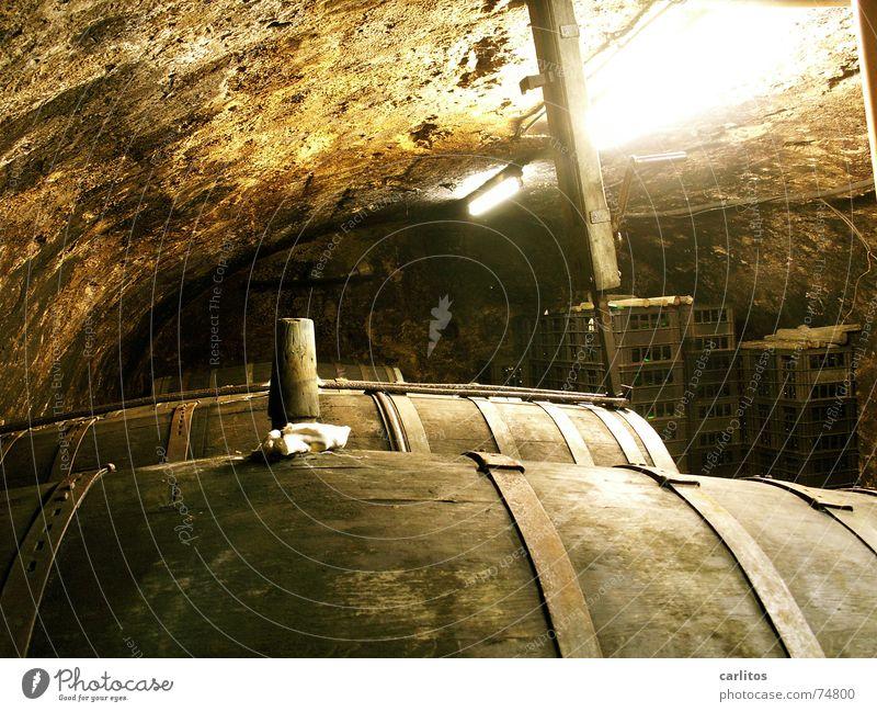 Weinfässer in einem alten Weinkeller Mosel (Weinbaugebiet) Keller Eichenfass Rotwein Weinprobe Filmriss Mineralwasser Kellergewölbe federweisser gärung