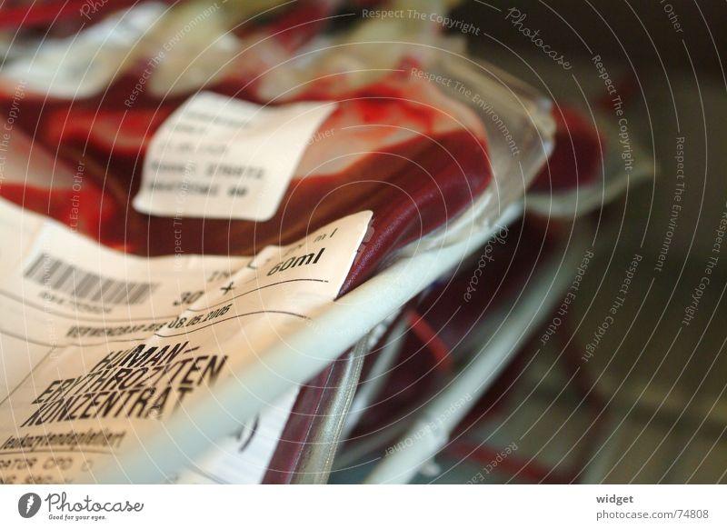 Neulich in der Blutbank. rot Leben Sicherheit Arzt Blutzelle Konzentration Gesundheitswesen Krankenhaus Blut Unfall Überleben Plasma Rote Blutkörperchen Konservendose Transfusion Hämoglobin