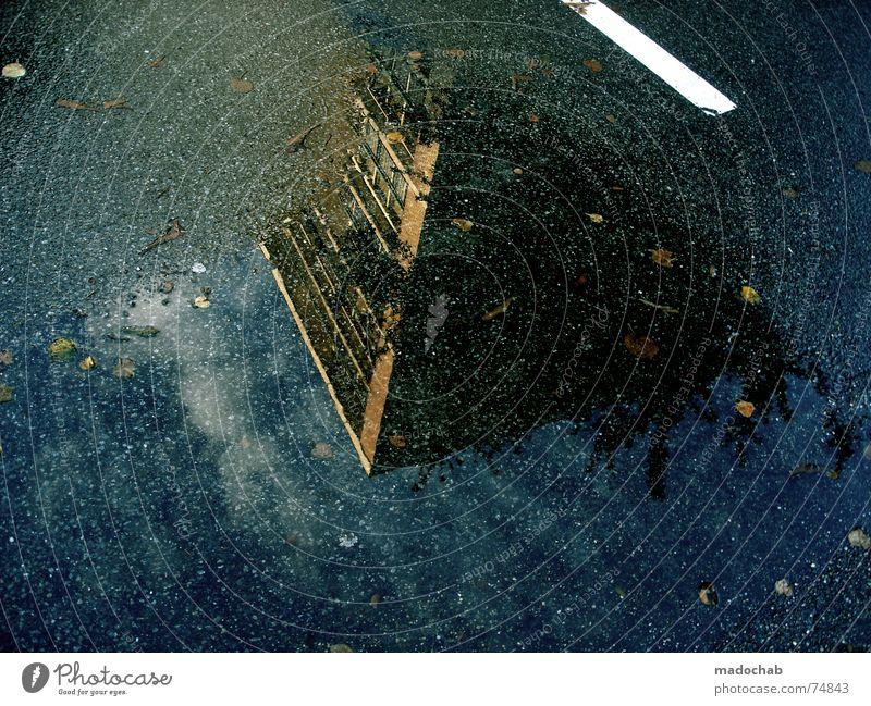 VISUAL SUICIDE | OVERDOSE Pfütze nass Herbst Haus Hochhaus Gebäude Material Fenster live Block Beton Etage trist dunkel Leidenschaft Spiegel Vermieter Mieter