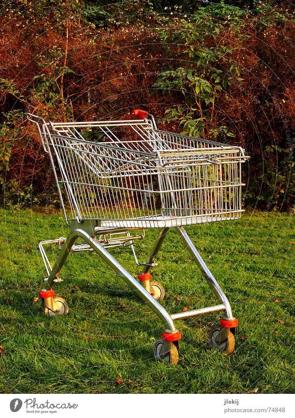 Einkauf auf der grünen Wiese Einkaufswagen Herbst Konsum Ladengeschäft Mikrochip Lebensmittel leer bezahlen fahren Güterverkehr & Logistik rot Rolle unterwegs