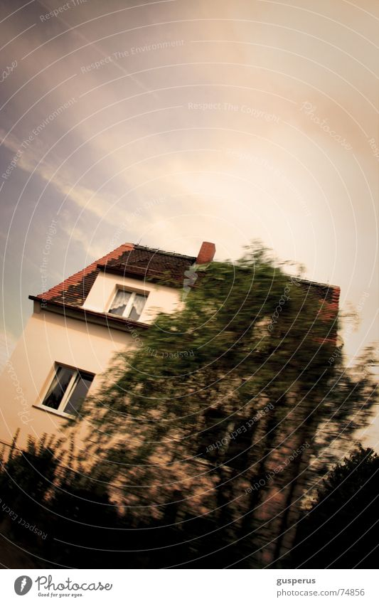 { ASYMMETRY OF HOUSE } Baum Haus Garten träumen Wohlgefühl