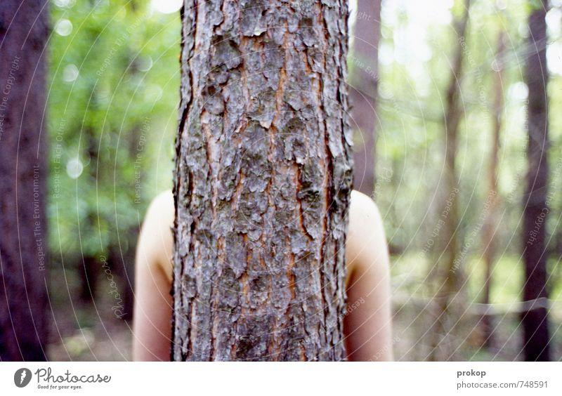 frieden. Mensch feminin Junge Frau Jugendliche Leben Arme Umwelt Natur Landschaft Pflanze Schönes Wetter Baum Wald stehen schön Gefühle Zufriedenheit