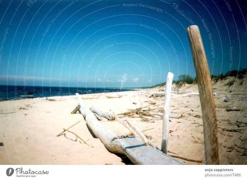 Gauja Meer Strand Sand Blauer Himmel Lettland