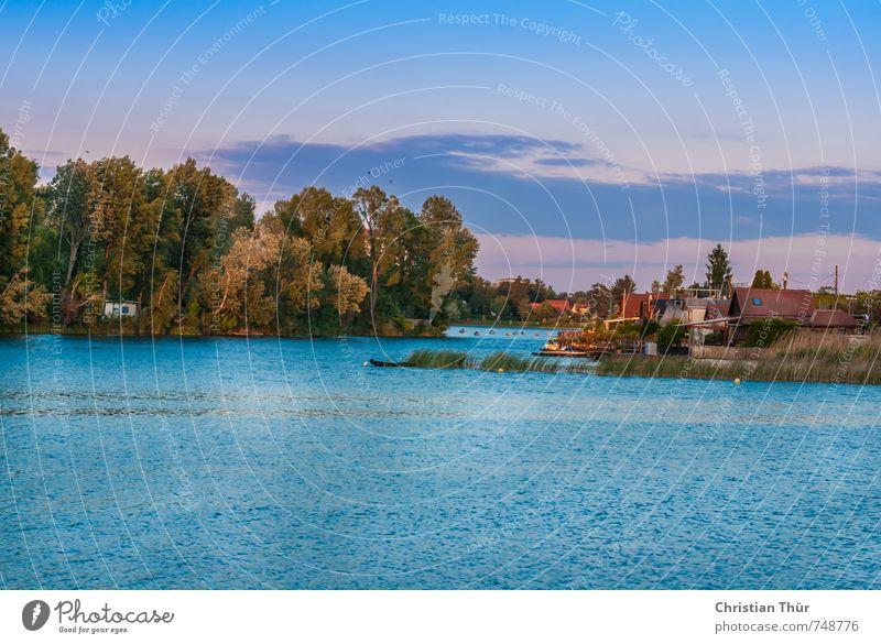 Erholung auf der alten Donau Himmel Stadt Sommer Baum Landschaft ruhig Freude Haus Umwelt Gefühle Gras Schwimmen & Baden Stimmung Sträucher ästhetisch