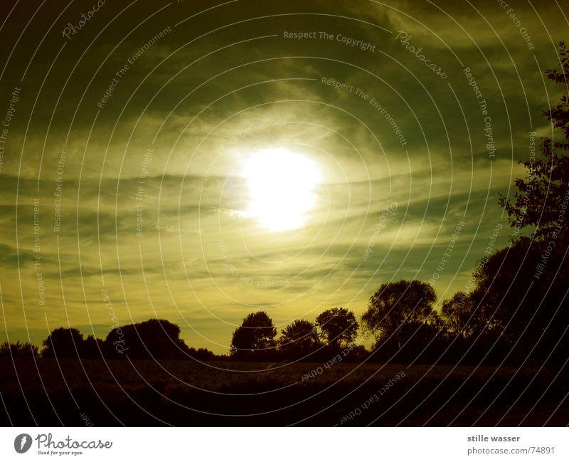 DER HERR SPRACH ES WERDE LICHT Baum entstehen Wolken Abenddämmerung Sonnenuntergang Planet oben Gegenlicht Leben einem anderen Stimmung Stern