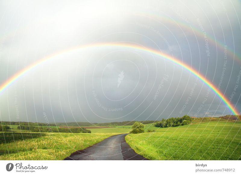 1000 - Danke Natur Sommer Landschaft ruhig Straße Wiese Wege & Pfade Religion & Glaube Glück außergewöhnlich Freiheit Horizont ästhetisch fantastisch