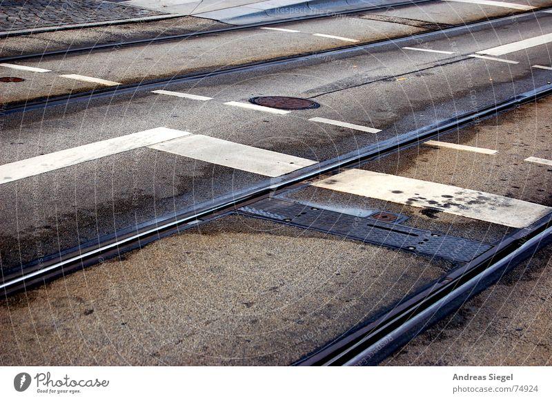 Und Stop! Fußgängerübergang Straßenbahn Öffentlicher Personennahverkehr Fahrkarte Linie Gleise Gully nass Pfütze grau Asphalt Verkehr Verspätung Dresden