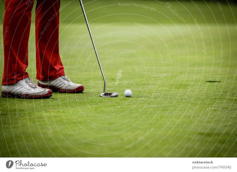 Golfer beim spielen Lifestyle Freizeit & Hobby Spielen Golfplatz Sport Mensch Natur fleißig Frustration ball green golfing grass player man court leisure