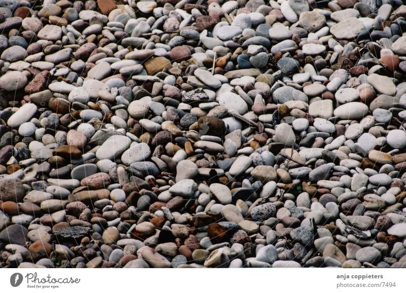 Steine Meer Strand Lettland Natur baltisch liepaja