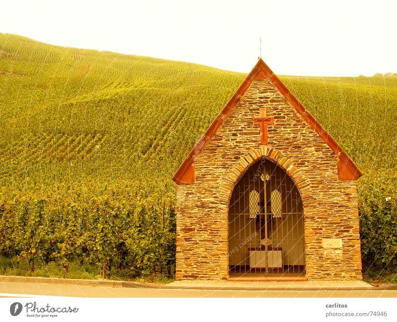 ..der Geist des Weines Glaube Christentum Weinberg Katholizismus aufgereiht Mosel (Weinbaugebiet)