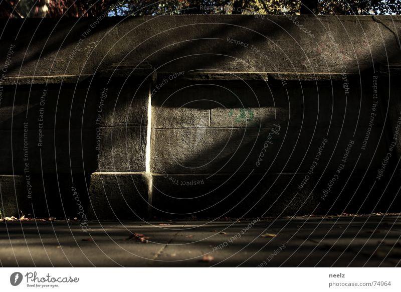 more crime in autumn Licht Mauer Blatt diagonal aufregend z Schatten Sonne herbstlicht