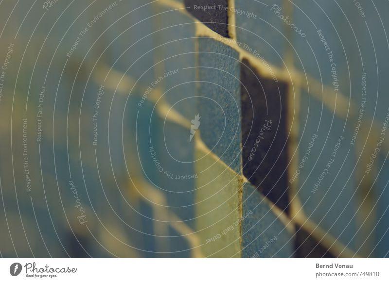 fuge ... Schwimmbad Fuge Fliesen u. Kacheln alt Siebziger Jahre blau Schwache Tiefenschärfe grün braun Perspektive Wand Muster Dekoration & Verzierung wellig