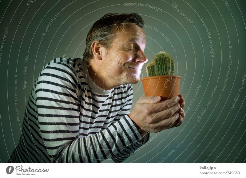 der kakteenversteher Mensch Natur Mann Pflanze Erwachsene Umwelt Liebe Kopf maskulin Lächeln Geschenk stoppen Duft Geruch Umweltschutz Grünpflanze