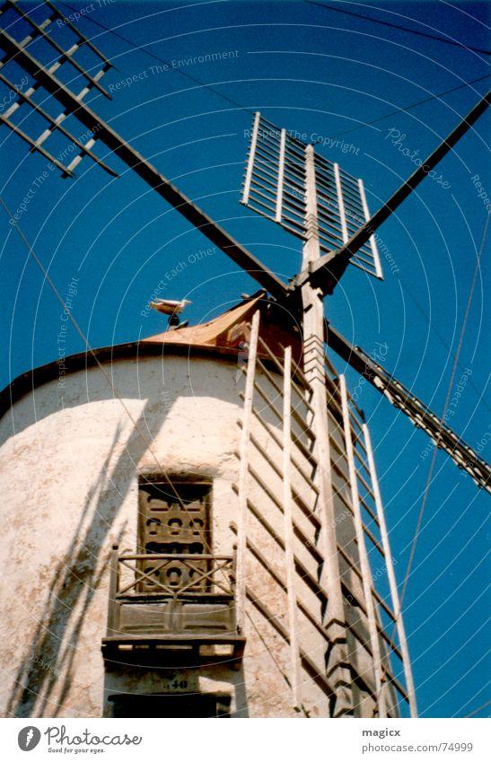 Holland meets Spain Windmühle Mühle Lanzarote Sommer Ferien & Urlaub & Reisen Spanien Möwe Himmel Flügel Blauer Himmel
