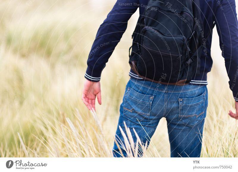 Dunewalker Mensch maskulin Junger Mann Jugendliche Erwachsene Rücken Arme Hand Gesäß 1 18-30 Jahre Umwelt Natur Pflanze Klima Wetter Gras Sträucher Wildpflanze