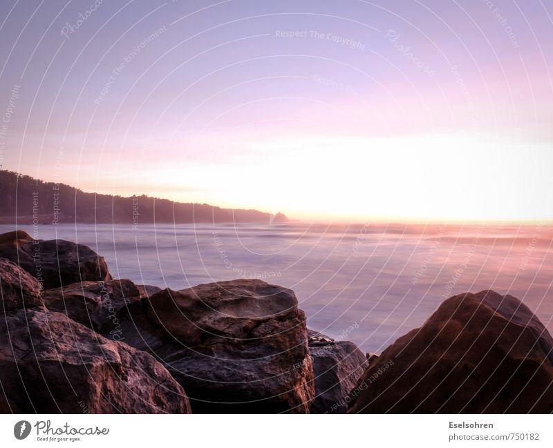 Punakaiki Natur Wasser Himmel Schönes Wetter Wellen Meer genießen warten Ferne frei Unendlichkeit gelb gold violett orange rosa ruhig Zufriedenheit Strand
