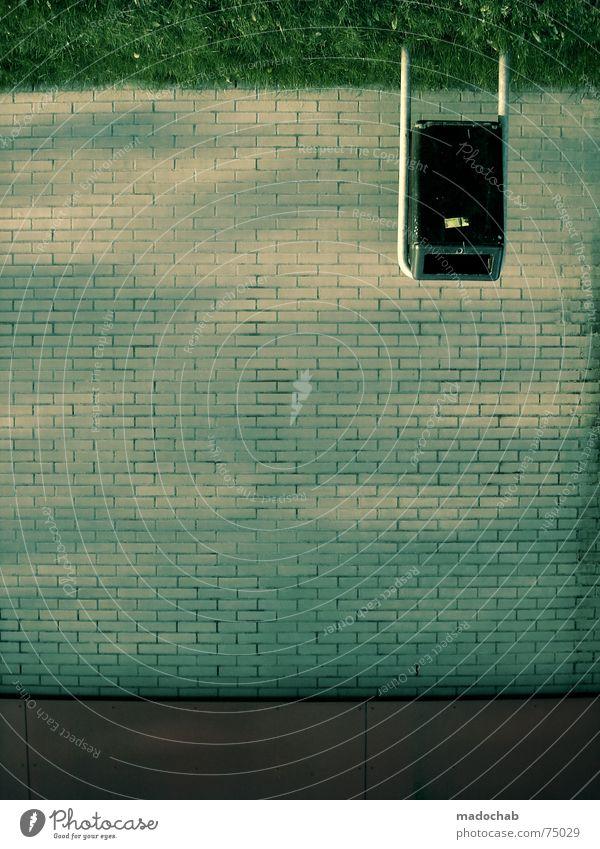WHT DE FCK | joke witz lustig witzig urban komik wand wall trash stehen Instant-Messaging stumm Wand entgegengesetzt verkehrt falsch Gras Wiese grün Backstein