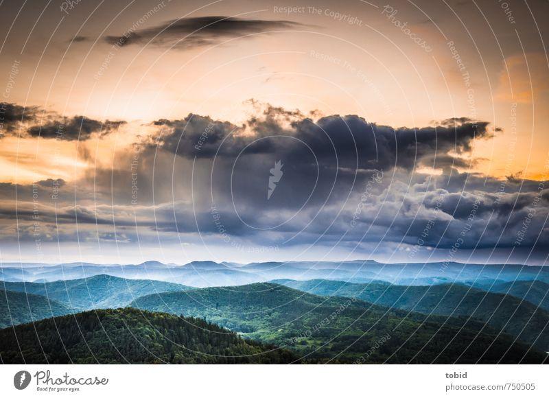 Cloudy sunset Himmel Natur blau grün Farbe Pflanze Sonne Landschaft Wolken Ferne dunkel Wald gelb Freiheit hell Horizont
