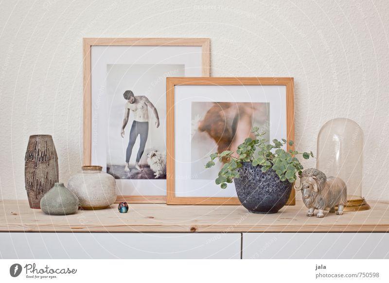 lieblingsdinge Häusliches Leben Wohnung Innenarchitektur Dekoration & Verzierung Möbel Kommode Pflanze Grünpflanze Topfpflanze Sammlerstück Vase Bild Fotografie