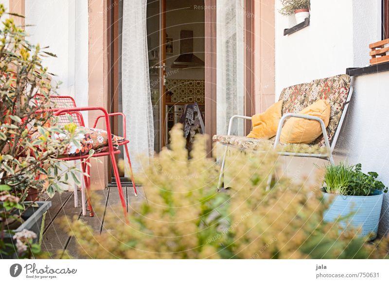 terrasse Stuhl Pflanze Sträucher Grünpflanze Topfpflanze Mauer Wand Fassade Terrasse Fenster Tür Erholung Farbfoto Außenaufnahme Menschenleer Tag