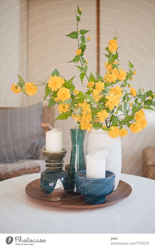 ranunkelstrauch Häusliches Leben Wohnung Innenarchitektur Dekoration & Verzierung Sessel Tisch Pflanze Blume Blatt Blüte Ranunkel Vase Kerzenständer ästhetisch