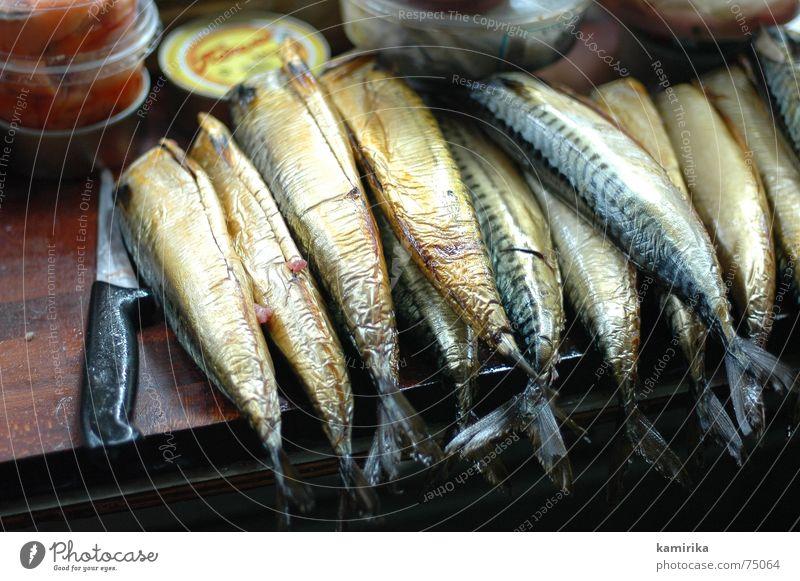 fisch fromm froehlich Israel Jerusalem Fleisch Mahlzeit Markt Ernährung meal eat denieren schneidbrett Fisch Essen zubereiten