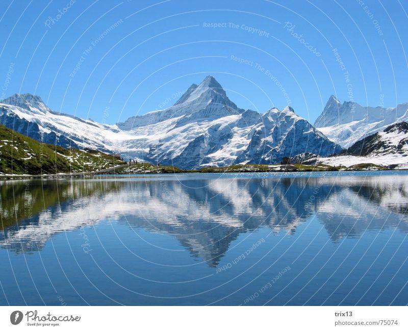 schreckhorn Natur Wasser Himmel weiß blau Schnee Wiese Berge u. Gebirge See groß Schweiz Aussicht Alpen Spitze Idylle Horn