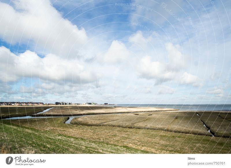 Rømø | weites Land Himmel Natur Ferien & Urlaub & Reisen blau grün Wasser Meer Erholung Landschaft Wolken Ferne Strand Umwelt Wiese Frühling Gras