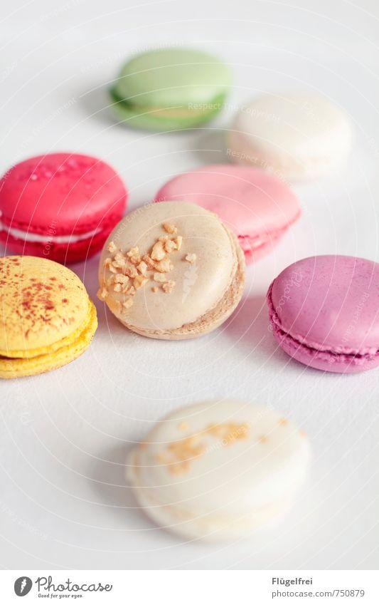 Bunte Kalorienbomben Ernährung süß Macarons Krokant ungesund lecker Süßwaren gelb rosa Pastellton Tischwäsche Füllung Backwaren Kuchen Baiser Farbfoto