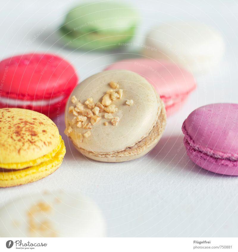 Bunte Kalorienbomben 2 Ernährung süß Macarons Backwaren Baiser Krokant Streusel Pastellton Süßwaren Kuchen Farbe Farbfoto Innenaufnahme Textfreiraum unten Tag