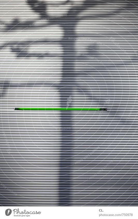 – Umwelt Natur Schönes Wetter Baum Gebäude Architektur Mauer Wand Fassade grau grün ästhetisch einzigartig Linie Schattenspiel Licht Neonlicht Beleuchtung