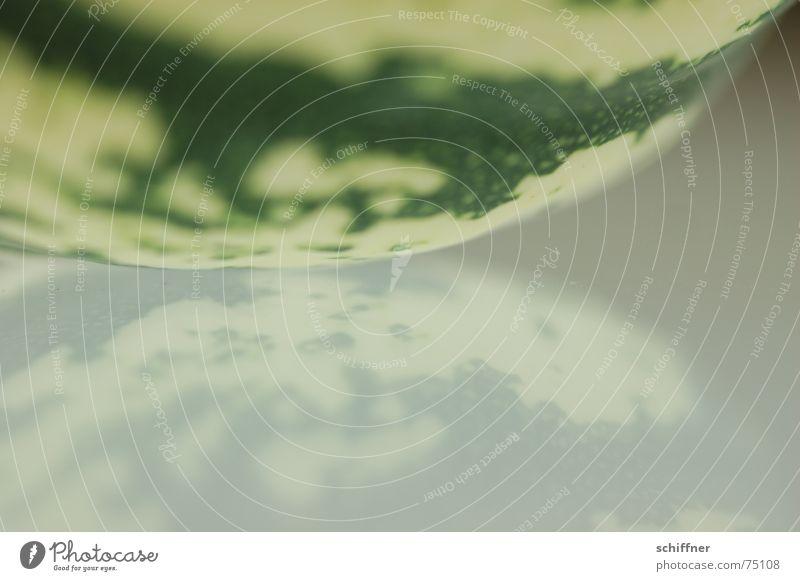 Kürbis1 grün Reflexion & Spiegelung Hintergrundbild Erde Strukturen & Formen