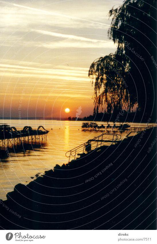 Sunrising Natur Sonne Treppe