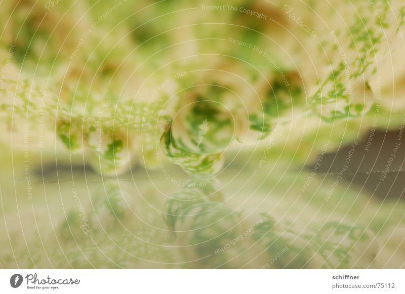 Kürbis 4 Herbst Hintergrundbild Spiegel Beule