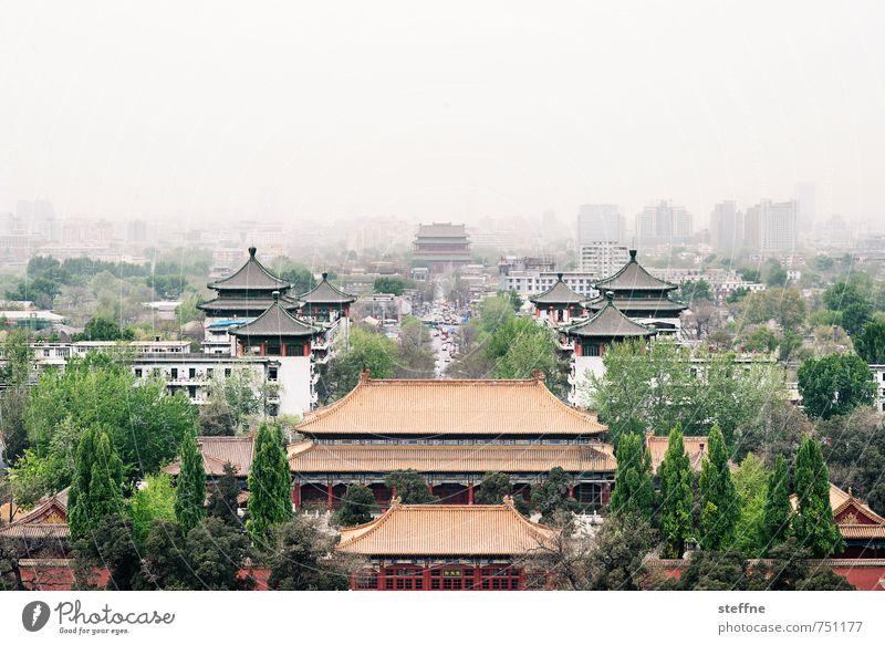 Fernost Baum Peking China Altstadt Haus Palast Stadt trommelturm Dunst Umweltverschmutzung Chinesische Architektur Farbfoto Textfreiraum oben