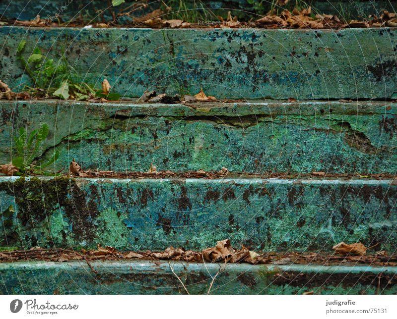 Stufen alt grün blau Blatt Einsamkeit Farbe Herbst oben Linie hoch Treppe Schwimmbad verfallen Verfall türkis