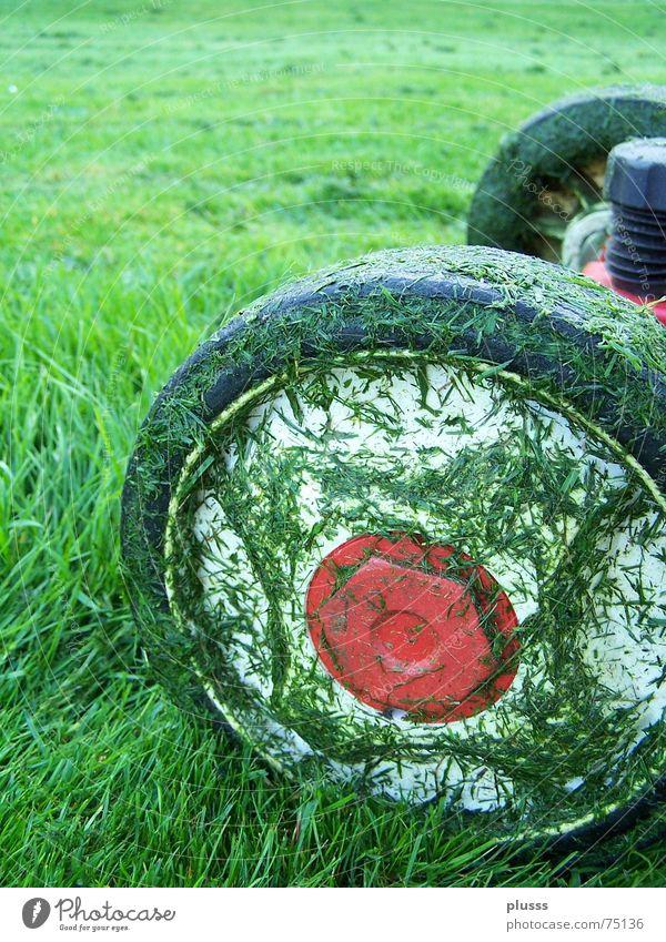 abgrasen2 grün rot Arbeit & Erwerbstätigkeit Wiese Gras dreckig nass hoch fahren Rasen Rad Reifen Halm Motor saftig geschnitten