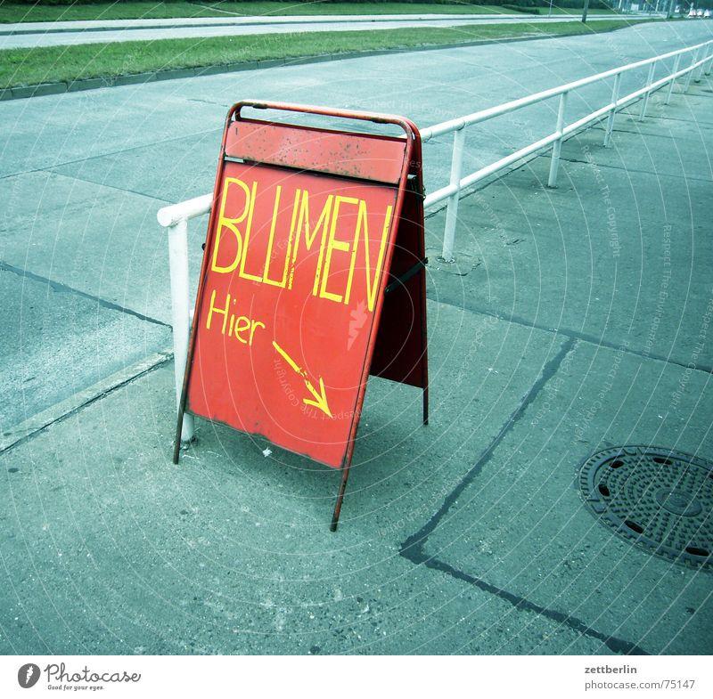 Blumen weiß Blume grün blau rot schwarz gelb Straße Tod grau Traurigkeit Schilder & Markierungen leer violett Werbung Pfeil