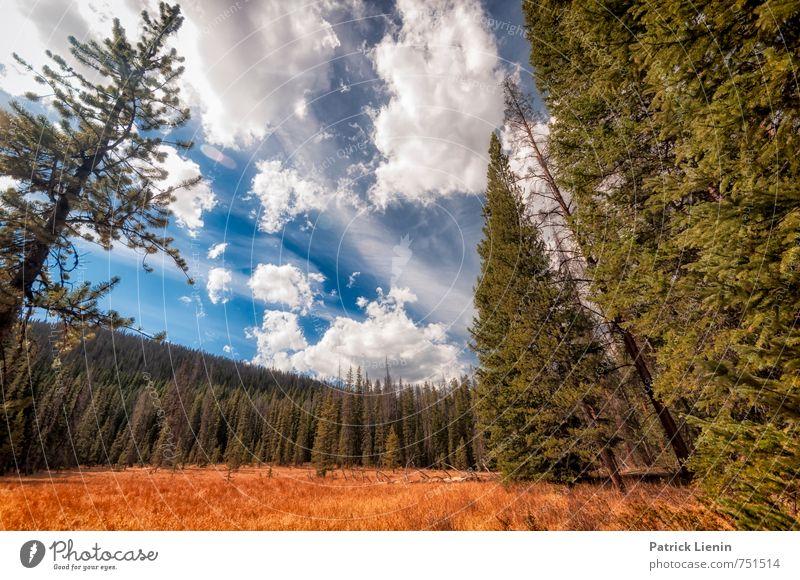 Mountain Weather Wohlgefühl Zufriedenheit Erholung ruhig Ferien & Urlaub & Reisen Tourismus Ausflug Abenteuer Ferne Freiheit Expedition Umwelt Natur Landschaft