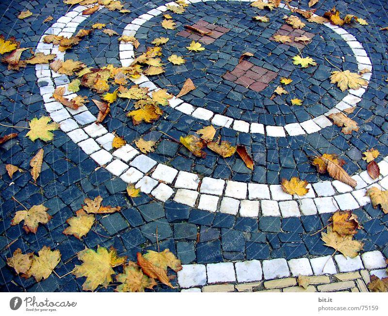 WIND><SPIEL Pflanze Blatt Straße Herbst Stein Stimmung Wind Umwelt Kreis rund Lebensfreude Sturm Leidenschaft Verkehrswege Kopfsteinpflaster Respekt