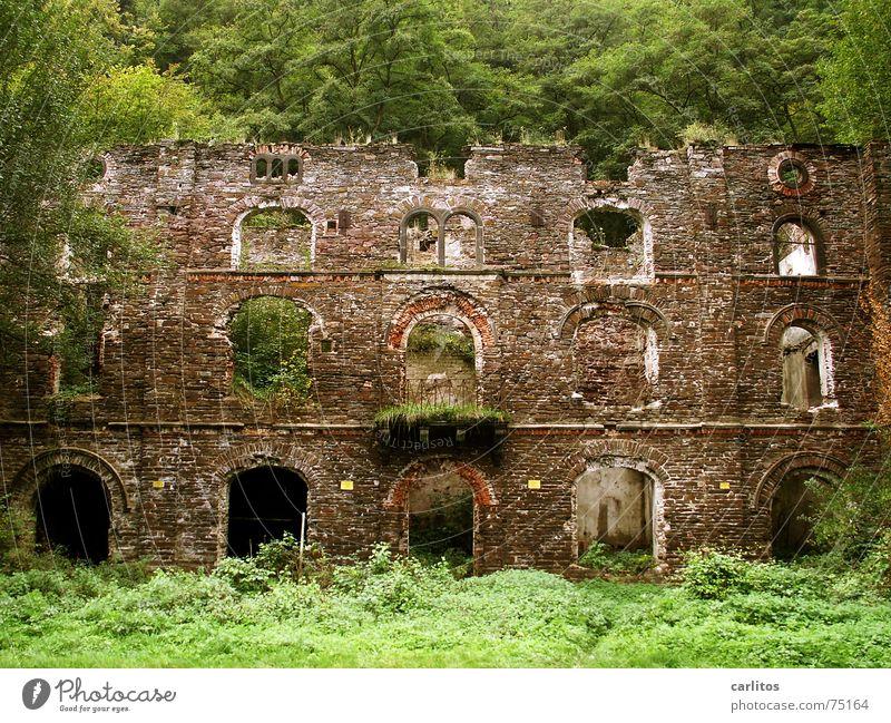 Fassade Ruine verfallen baufällig historisch Bogen Balkon fensteröffnungen alt die natur erobert alles zurück