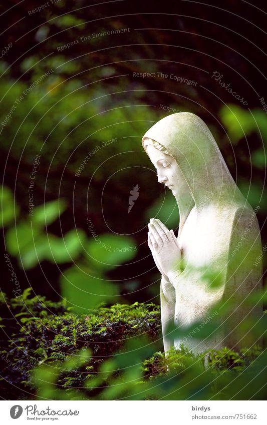 Gebet im Grünen Natur schön grün weiß Pflanze Baum ruhig Blatt feminin Tod Religion & Glaube Park ästhetisch Vertrauen Statue