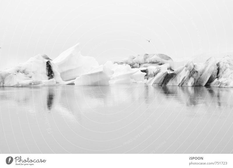 Island II Wasser weiß Landschaft kalt Umwelt grau ästhetisch Gletscher Jökulsárlón