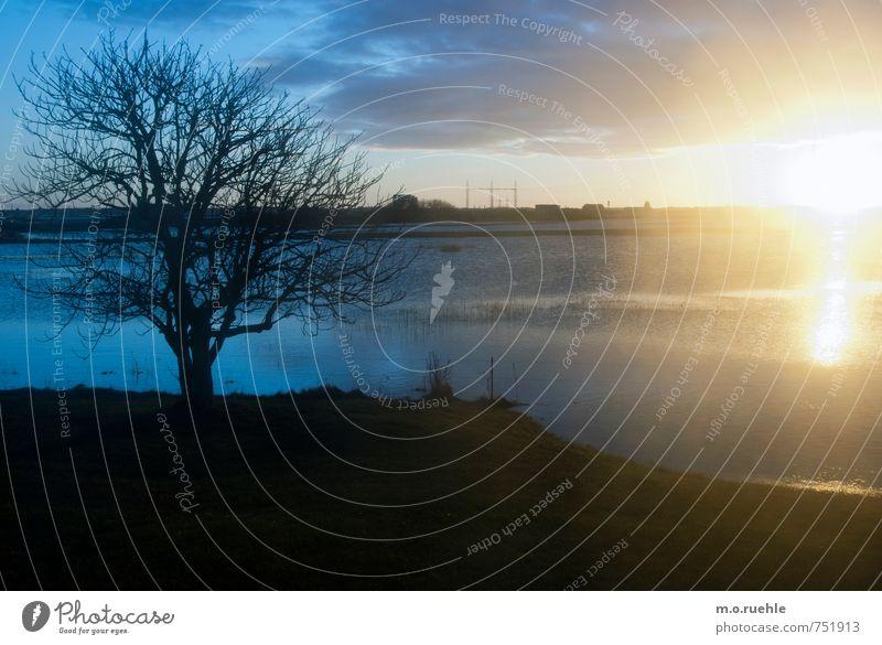 the great escape Himmel Natur Wasser Pflanze Sonne Baum Einsamkeit Landschaft Wolken Ferne Winter Umwelt Gefühle Küste Horizont Luft