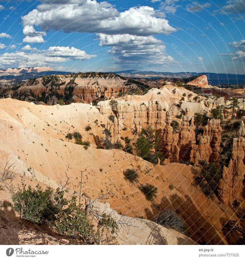Wege und Pfade Mensch Himmel Natur Ferien & Urlaub & Reisen blau Landschaft Wolken Ferne gelb Wege & Pfade Freiheit Felsen Horizont Sträucher Klima wandern