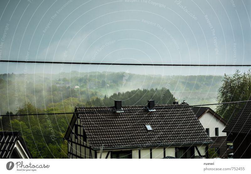 Drunt' im Tale nebelt's sehr Natur alt grün Wasser Sommer Landschaft Wolken Haus Wald Umwelt Frühling grau braun Luft Wetter Regen